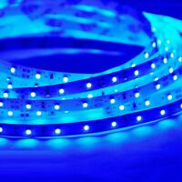 5M 2835 Blue color Indoor /Ooutdoor Flexible Strip SMD 300 LED Light Strip 12V