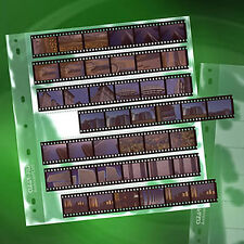 50x CLEAR FILE 135 35mm 7 strips Film Pages Sleeves Archival Storage System #14B