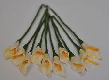 "Mulberry Paper Arum Calla Lily CREAM 1"" (S) miniature for scrapbook crafting"