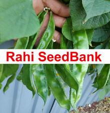 Hyacinth Bean Shim Shem Bangladeshi Indian Long Green Delicious Variety 5 Seeds