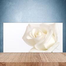 Crédence de cuisine en verre Panneau Paroi 100x50 Floral Rose