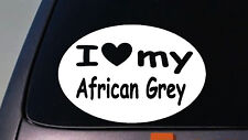 i love my AFRICAN GREY parrot  STICKER bird macaw WINDOW STICKER DECAL Cage Wing