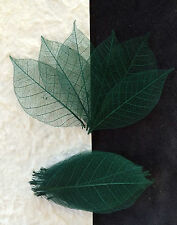 25 Skeleton Leaves Dark Green small rubber leaf Soap Scrapbook Christmas Wedding