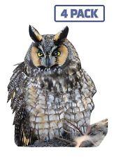 Long-eared Owl Eagle Hawk Birds of Prey Sticker Vinyl Decal 1-014