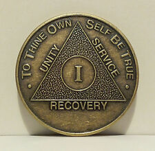 Alcoholic 1 Year Recovery 1 Yr Medallion Coin Medal Token  AA Anonymous Wendell
