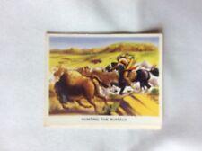 m17d1 trade card weetabix the western story no 4 buffalo hunting