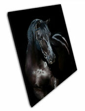 Print on Canvas large beautiful Black horse Wall Art Ready to Hang 30 x 20 Inch