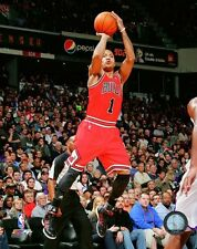 """DERRICK ROSE """"Chicago Bulls"""" LICENSED un-signed poster picture print 8x10 photo"""