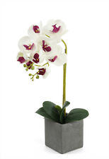 New Artificial Fake White Silk Touch Butterfly Phalaenopsis Orchid Potted 45cm