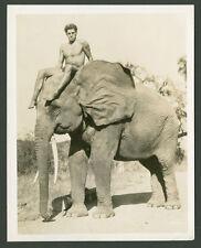 TARZAN THE APE MAN, WEISSMULLER, THREE VINTAGE PHOTO STILLS 1932
