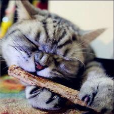 5PCS Pet Cat Cleaning Teeth Pure Natural Catnip Molar Silvervine Actinidia Stick
