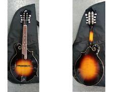 The Loar LM-520-VS Performer Series F-Style Mandolin