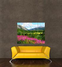 POSTER PRINT PHOTO LANDSCAPE MOUNTAINS NORWAY BLUE SKY WILD FLOWERS PAMP236