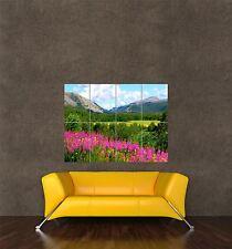 Cartel impresión Foto Paisaje Montañas Noruega Cielo Azul Flores Silvestres pamp236