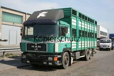 Truck Photo lorry photo MAN f90 26.372 Livestock Transporter-Livestock/237