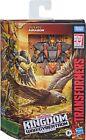 Transformers Kingdom Deluxe Airazor Airrazor War for Cybertron Decals In Stock
