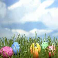 Easter Day 10'x10' Cp Backdrop Computer printed Scenic Background zjz-398