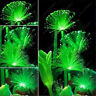 100 Pcs Rare Emerald Fluorescent Flower Seeds Night Light Emitting Plants