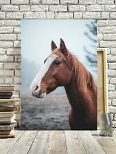 STUNNING BROWN HORSE PORTRAIT CANVAS #102 HORSE CANVAS WALL ART PICTURES