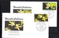 Nouvelle-Calédonie   enveloppe   flore fleurs  orchidées   1991