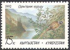 Kirghizistan 1992 Saria-c'helek riserva naturale/FAGIANO/Birds/Fauna Selvatica 1v (n25351)