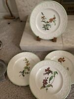 """Copeland Spode pattern 2-9367 FOUR Different botannical 9 1/4"""" Luncheon Plates"""