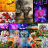 Full Drill DIY 5D Diamond Painting Embroidery Needlework Cross Crafts Stitch Kit
