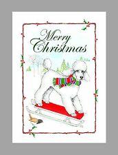 Poodle (White) Dog Christmas Cards, Box of 16 Cards & 16 Envelopes