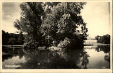 Donaueschingen alte Postkarte ~1950/60 Partie am See Schloß im Hintergrund Bäume