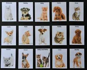 Dementia Activity - Memory Matching Pairs (Puppies and Kittens)