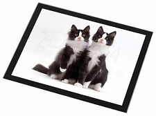 Two Black and White Cats Black Rim Glass Placemat Animal Table Gift, AC-127GP