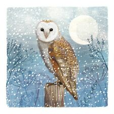 Owl Christmas Charity Greeting Cards Pack Of 10 Support Royal Trinity Hospice