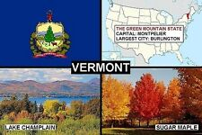 SOUVENIR FRIDGE MAGNET of THE STATE OF VERMONT USA