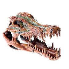 Crocodile Skull Brown Cave Aquarium Ornament Decoration Fish Tank Bones Remains