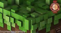NEW MINECRAFT BLOCKS SCENE MINE CRAFT VIDEO GAME WALL ART PRINT PREMIUM POSTER