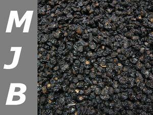 500g  schwarze Johannisbeeren getrocknet unbehandelt  natur ( 24,80 € / 1000 g)
