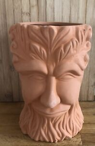 Latex Mould for making this Stunning Tree Face Flower Pot