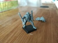 AOS Empire Free Peoples Pistoliers Outriders Leaders Cloak Coat Sword B2 C