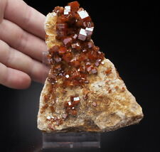 VANADINITE  -  big, lustrous crystals on matrix !! MOROCCO /aj886