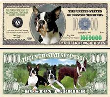 dollarschein  BostonTerrierDog
