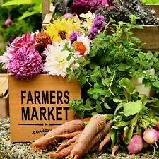 $1.99 Vegetable Herb & Flower Garden Seeds 100+ Varieties Combined.99 Shipping