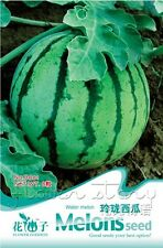 1 Pack Water Melon Seeds Organic Vegetables Seeds Nutrient Garden Plant Hot