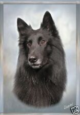 Belgian Shepherd Dog Groenendael Blank Card - Starprint