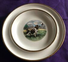 Vintage English Springer Spaniel 7� Plate By Ivory Lamberton China Scammell Usa