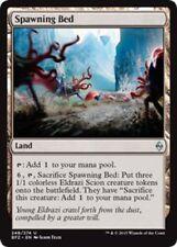 Land Battle for Zendikar Individual Magic: The Gathering Cards in English