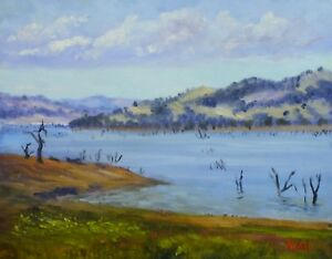 Original oil painting near Lake Hume Vic 25 x 30 cm Oil paint on canvas by Vidal