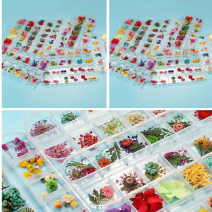 DIY Dried Flowers Dry Plants for Resin Molds Fillings Epoxy Craft Nail Art Decor