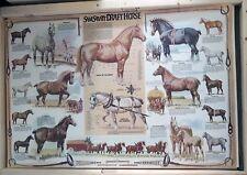 ART PRINT DRAFT HORSE POSTER by SAM SAVITT, 24 X 36