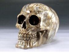 Skull Agate Color Figurine Statue Skeleton Halloween