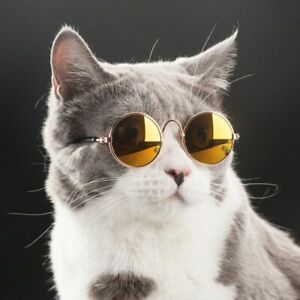 Cats Glasses Cool And Fun Funny Cats Eye Wear Dog Sunglases Dog Glasses Googles